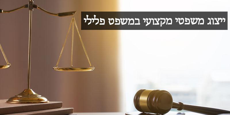 LawOnTheWeb – ייצוג מקצועי במשפט פלילי, אסור לך להסתפק בפחות!